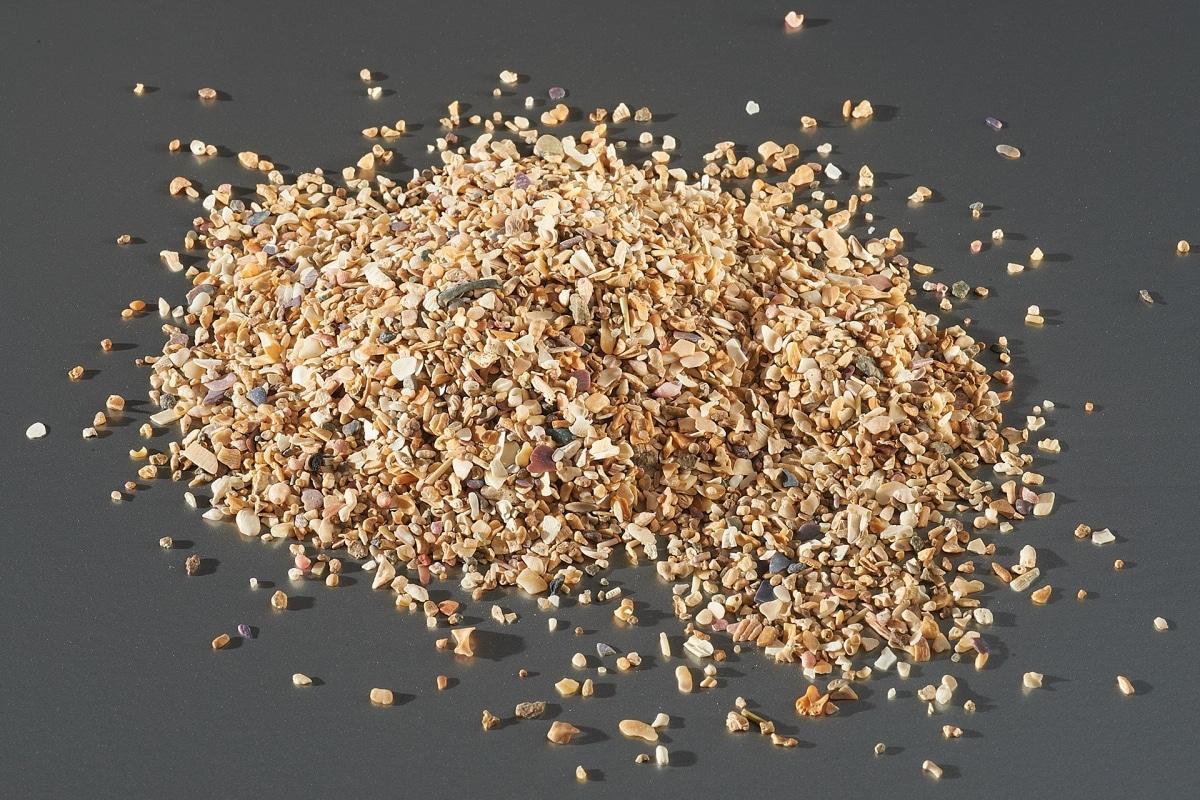 charge-minerale-echantillon-argilus-coquillage