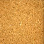 enduit-finition-lin-argilus-jaune-tournesol