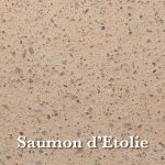 saumon-etolie